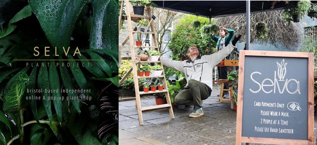 Sam Selva Started 'Selva Plant Projects' in Lockdown to Sell Plants in Bath and Bristol.